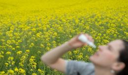 Ученые оценили утверждение о безопасности коронавируса для аллергиков